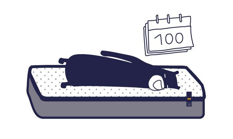 retour-tediber-100jours-800x480